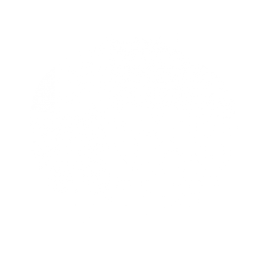 Profile3.png